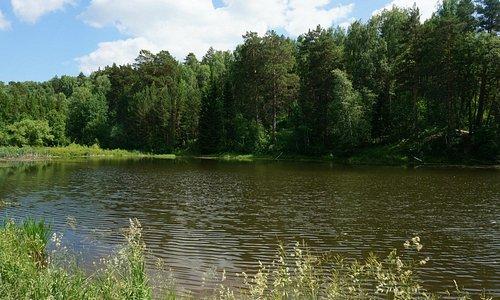 Сказочный пруд