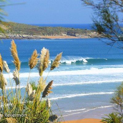 Preciosa foto de nuestra playa