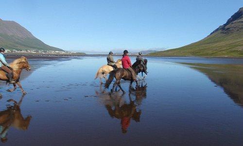 Riding on a black sand beach in Norðfjörður