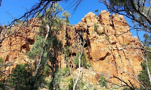 Rocks where the wallabies hide