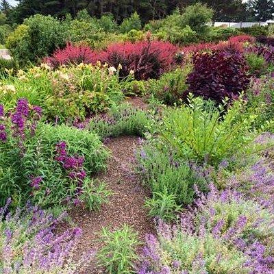 Humboldt Botanical Gardens