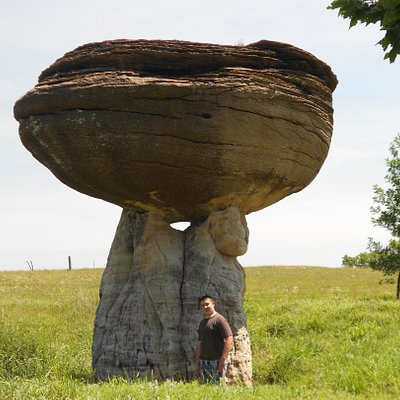 one of the mushroom rocks