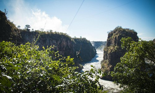 The Vic Falls Canopy Tour