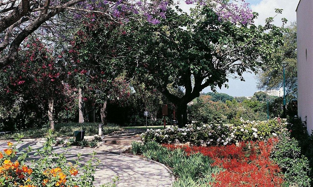 Weizmann House - gardens