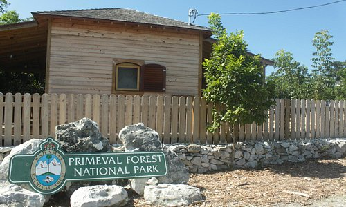 Primeval Forest entrance