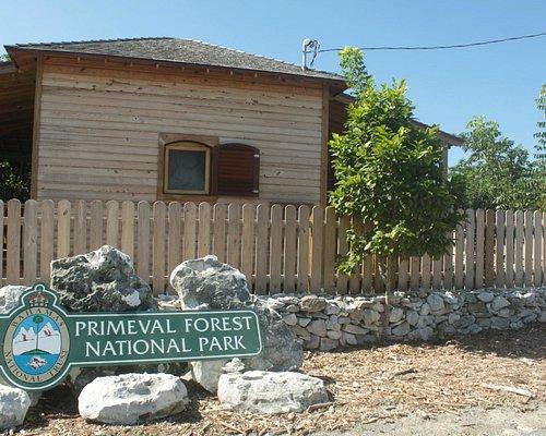 Primeval Forest entrance