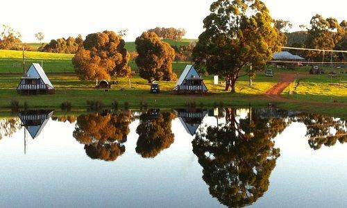 Lucieville Farm Dam - such a beautiful centre piece.