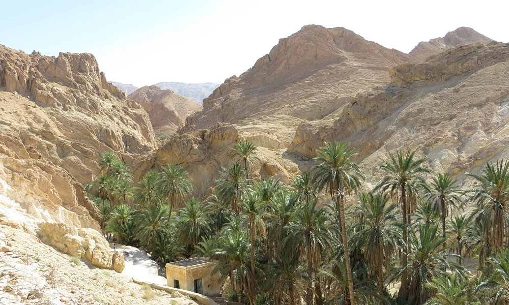 VLT South Tunisia Tour, June 2014: Chebika mountain oasis