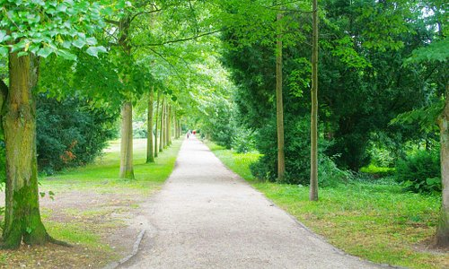 The green walkway...