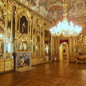 sala di Palazzo Carignano