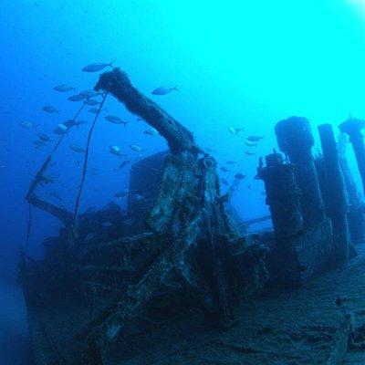 Madeirense shipwreck