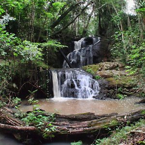 Karura River Waterfall