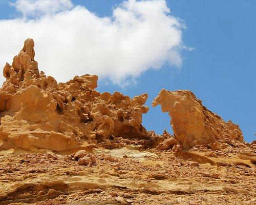 Wadi Hitan