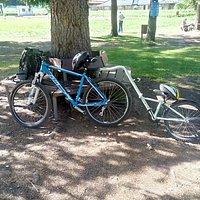 bici con cammellino...