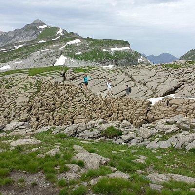 cretaceous rocks