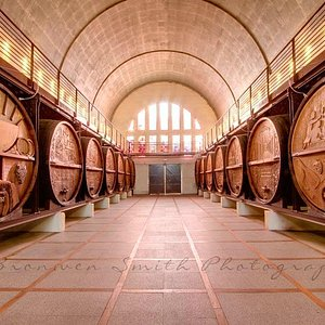 Cathedral Cellar
