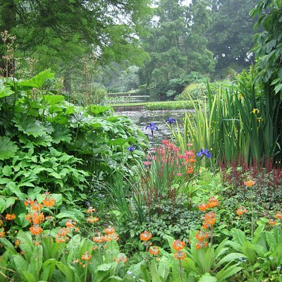 The Water Gardens in July.