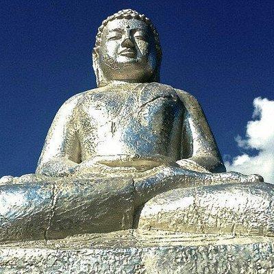 Mange fine Buddhaer