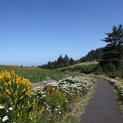 Pacific View Trail
