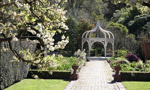 Ohinetahi Garden,Down the border
