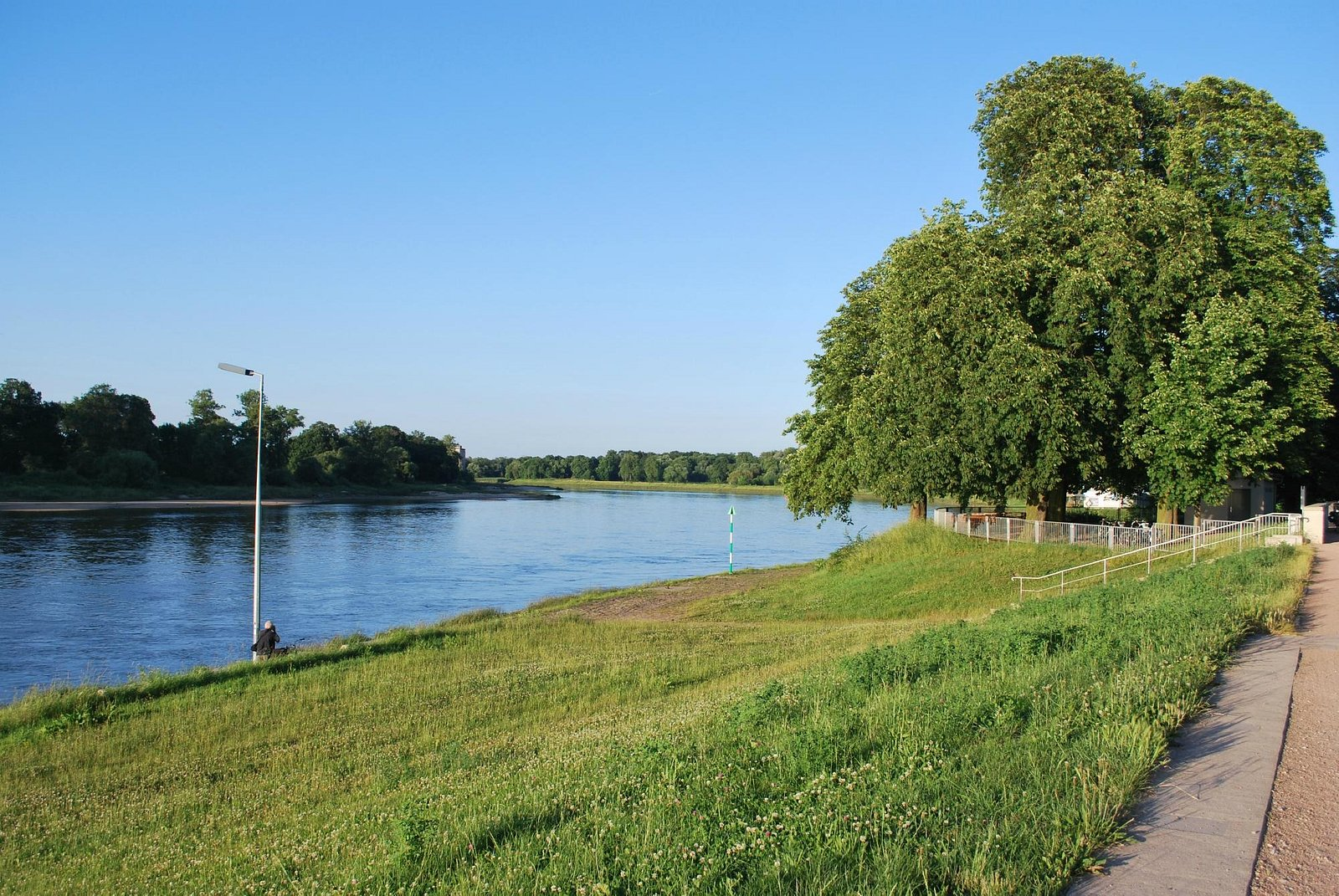 The bank of the river Elbe