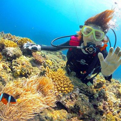体験ダイビングはマンツーマンで対応!クマノミとのツーショットも実現します!