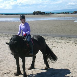 This wee horse is called Rosie, behind is the beach we cantered and galloped on.