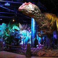 Allosaurus, DinoPark Liberec