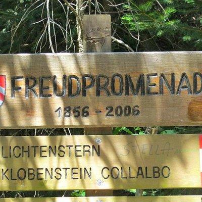 Freudpromenade
