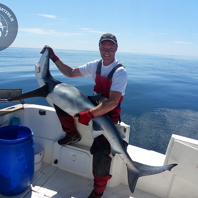 Blue Shark tagged and released 2014