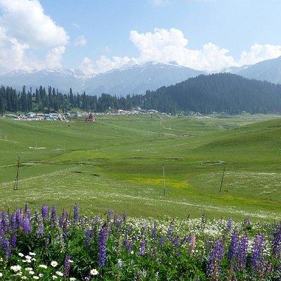 View over Gulmarg, Kashmir