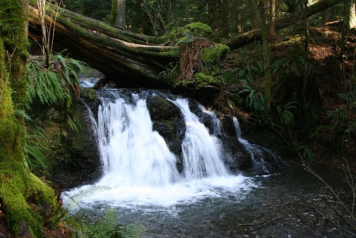 waterfall in Moran
