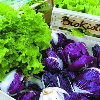 Biokistl Geschäft in Auer