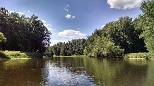 Blackwater River, gorgeous reminds me of home (NC).