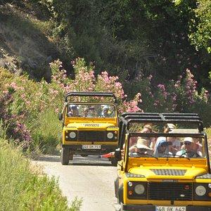 evergreen jeep safari
