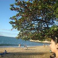 Praias da Ilha do Boi
