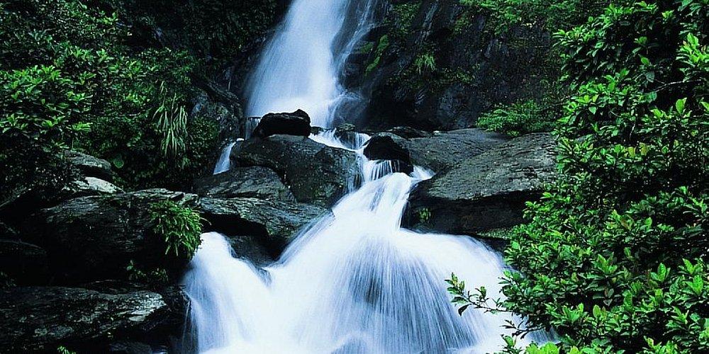 Waterfall in Neidong Forest Park