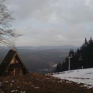 Dzikowiec Jesien 2010