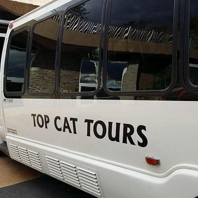One of Top Cat's 8 buses