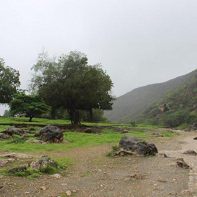 Ain Razat