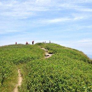 Art Loeb trail steadily ascending.