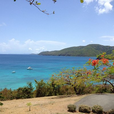 View of Brewer's Bay from UVI