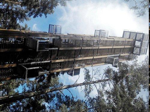 Обзорная башня в парке Дзинтари