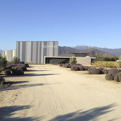 Winery and Wine Shop