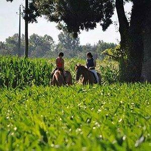 Grande passeio a cavalo.