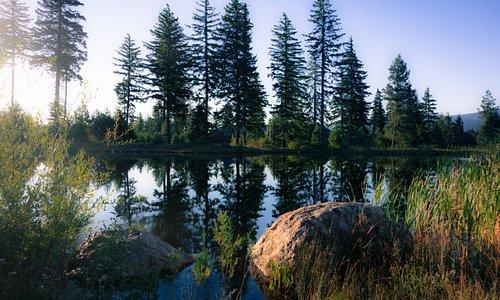 Little lake for rowing near fitness center