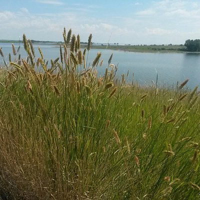 Hike the banks of the lake and enjoy the peace of the ND scenery.
