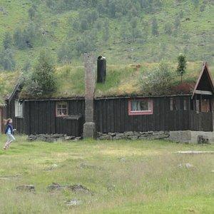 case di legno con il tetto d'erba (e alberi)