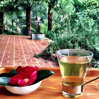 Delicious hydrating ginger and lemongrass tea