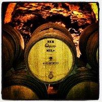 Coppo Wine Cellar - Canelli